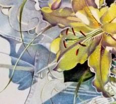 Lily by Barbara Benedetti Newton