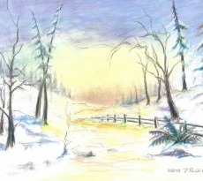 Winter Sunset by Donella Robbins