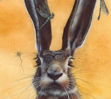 A Bug In Your Ear by Eileen Sorg