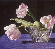 Crystal Light by Iris Stripling