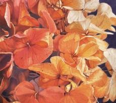 Hydrangea-scape #2: Last Blush by John Ursillo