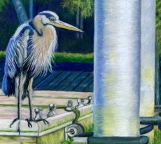 Heron's Corner by Judy Moritz