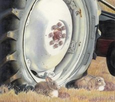 Rabbit Rendezvous by Mary Ritchie