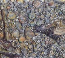 Low Tide by Pamela Belcher