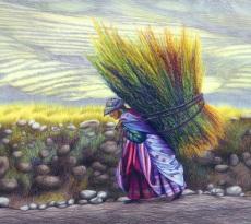 To Market by Pamela Belcher