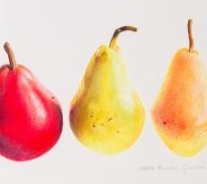 Three Pears by Rhonda Gardner