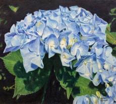 Hydrangeas by Bill Walcott