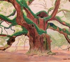 Angel Oak by Chris Hanley