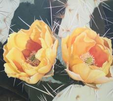 Cactus Flower by Diane Masek-Blow