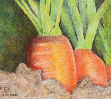 Three For Lunch, Carrots by Karen L. Smith