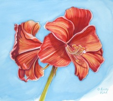 Amaryllis Duet by Kristy Kutch