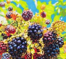 Wildberries by Rhonda Dicksion