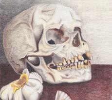 Bone White by Trudy Rolla